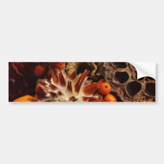 Collage de la cosecha de la caída pegatina de parachoque