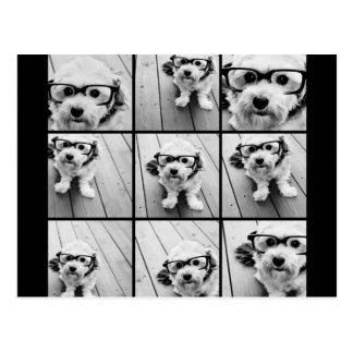 Collage de la foto de Instagram con 9 fotos cuadra Tarjetas Postales