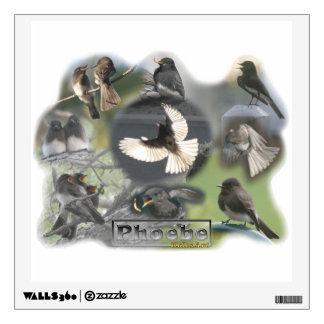 Collage de la foto de los pájaros de Phoebe