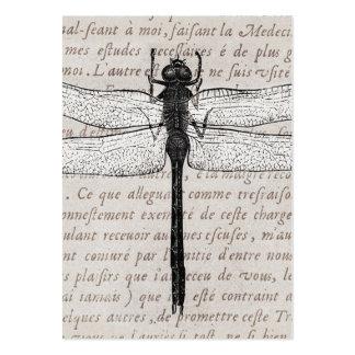 Collage de la libélula del vintage y del texto de  tarjeta personal