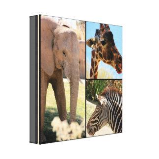 Collage de la lona del safari lona envuelta para galerías