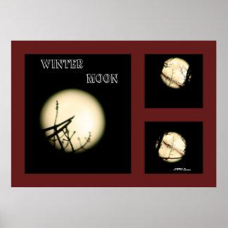 Collage de la luna del invierno impresiones