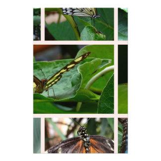 Collage de la mariposa tarjeton