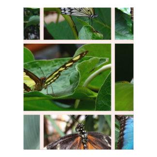 Collage de la mariposa tarjeta publicitaria