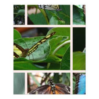 Collage de la mariposa tarjetón
