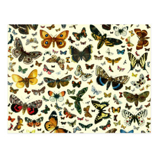 Collage de la mariposa postal