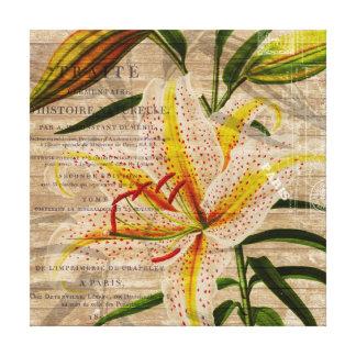 Collage de la orquídea del vintage impresiones en lienzo estiradas