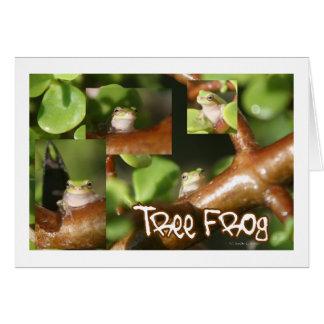 Collage de la rana arbórea, mismas diversas actitu tarjeta
