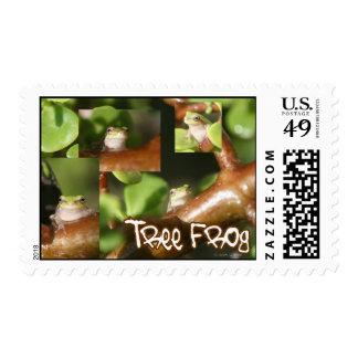 Collage de la rana arbórea, mismas diversas sello