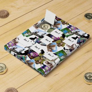 Collage de las fotografías del gato calendarios de adviento de chocolate