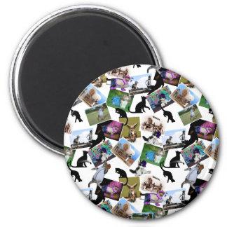 Collage de las fotografías del gato imán para frigorífico