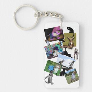 Collage de las fotografías del gato llavero rectangular acrílico a doble cara