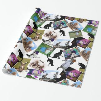 Collage de las fotografías del gato papel de regalo