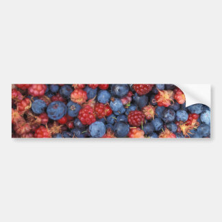 Collage de las frambuesas salvajes de los pegatina para auto