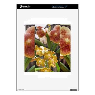 Collage de las orquídeas calcomanías para iPad 2