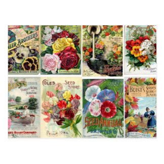 Collage de los catálogos de semilla de flor del tarjetas postales