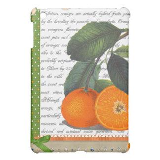 Collage de los naranjas del vintage