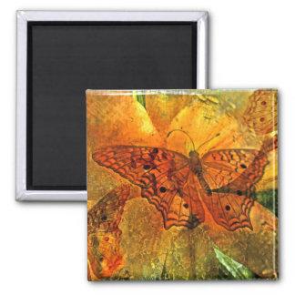 Collage de oro de la mariposa - imán