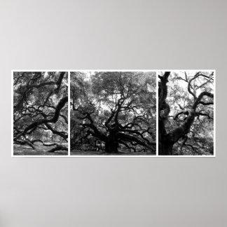 Collage del árbol del ángel poster
