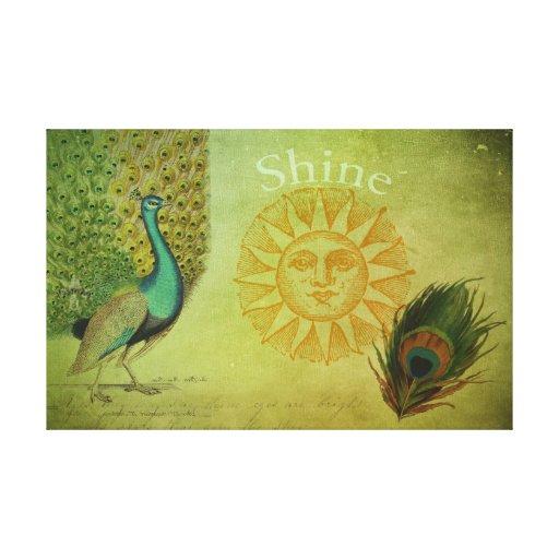 Collage del arte del pavo real del vintage lona envuelta para galerías