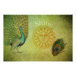 Collage del arte del pavo real del vintage fotografias