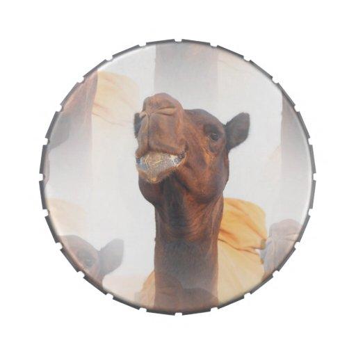Collage del camello jarrones de dulces