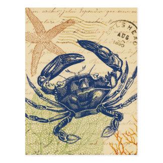 Collage del cangrejo azul de la playa postal
