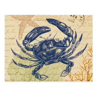 Collage del cangrejo azul de la playa tarjetas postales