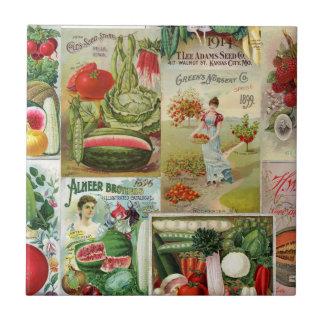 Collage del catálogo de la fruta y de semilla de teja