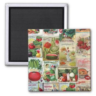 Collage del catálogo de la fruta y de semilla de imán cuadrado