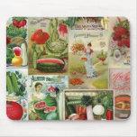 Collage del catálogo de la fruta y de semilla de alfombrilla de ratón
