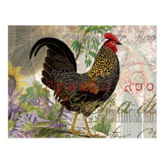 Collage del francés del gallo del vintage postal