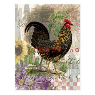 Collage del francés del gallo del vintage tarjeta postal