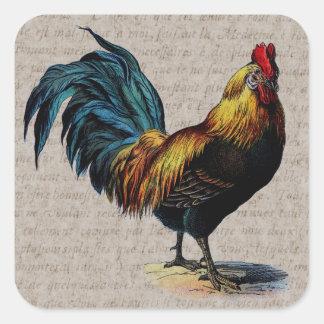 Collage del gallo del vintage y del texto de la pegatina cuadrada