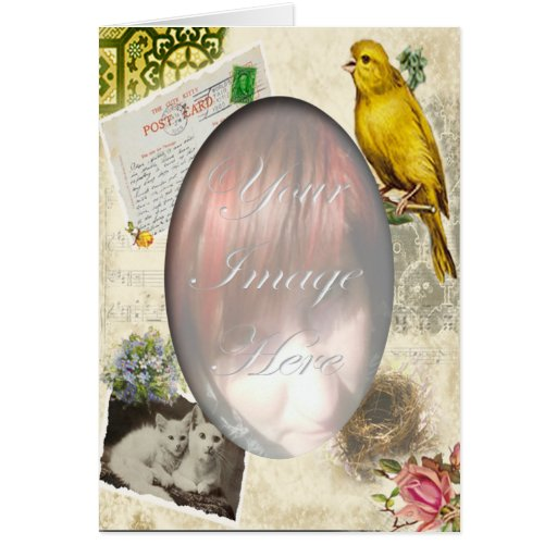 Collage del gato y del pájaro tarjeta de felicitación