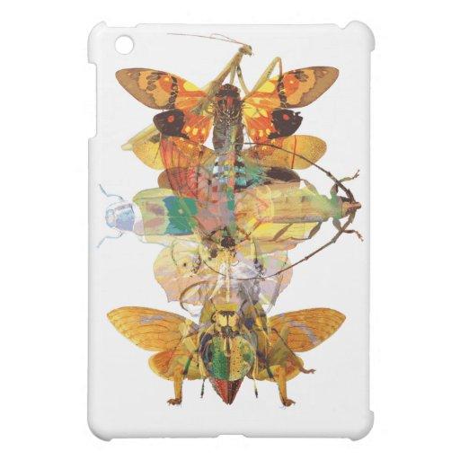 Collage del insecto