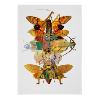 Collage del insecto posters
