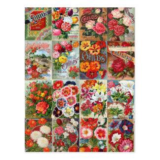 Collage del jardín de los paquetes de la semilla tarjeta postal