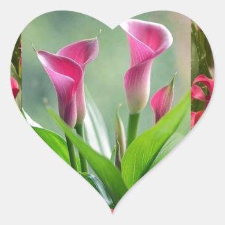 Collage del JARDÍN: Flores hermosas Calcomanías Corazones