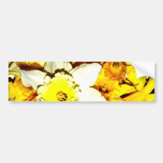 Collage del narciso pegatina para auto