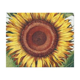 Collage del papel pintado del damasco del vintage impresion de lienzo
