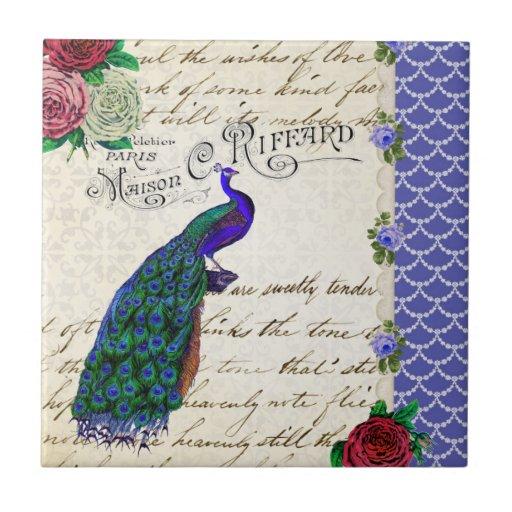 Collage del pavo real del vintage azulejo cuadrado pequeño