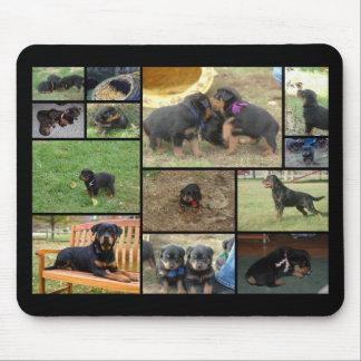 Collage del perrito de la litera de C Tapetes De Raton