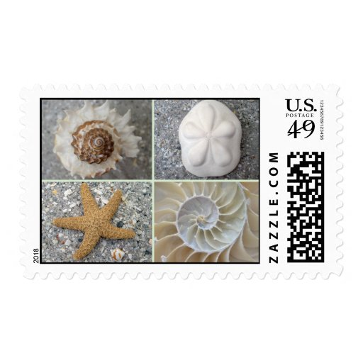 Collage del Seashell Sellos