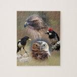 Collage del vigilante de pájaro puzzles con fotos