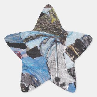 Collage estupendo de Sandy de la tormenta Pegatina En Forma De Estrella