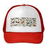 Collage europeo de la mariposa gorras de camionero