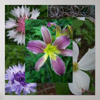 Collage floral de Jocelyn Burke Póster