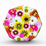 Collage floral del verano colorido