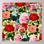 Collage floral elegante bonito de la rosaleda del  impresiones